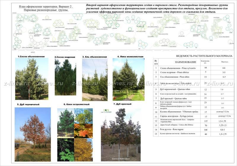 Ландшафтный дизайн проектирование